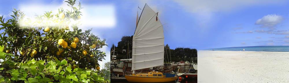 Segel–Pastor / Sailing Pastor